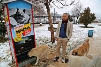 Boks Makinesinden Esinlendi, Sokak Hayvanları İçin Mamamatik Yaptı