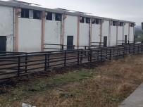 İkinci Çiftlik Bank Vurgununda 5 Tutuklama Daha
