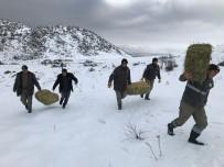 ERMENEK - Karaman'da Yaban Hayvanlarına Yem Desteği