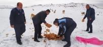 YAĞIŞLI HAVA - Sincan Belediyesi Soğuk Havada Sokak Hayvanlarını Unutmadı