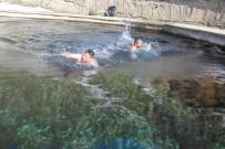 YÜZME - Bitlisliler Eksi 10 Derecede Suya Girdiler