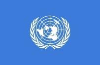 ORTA AFRİKA CUMHURİYETİ - BM'de 10 Ülke Oy Kullanma Hakkını Kaybetti