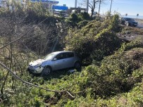 Yoldan Çıkan Otomobil Fındık Tarlasına Uçtu Açıklaması 1 Yaralı