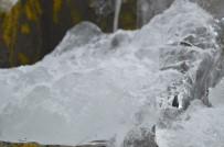 ADıGÜZEL - Ağrı'da Soğuk Hava Hayatı Durma Noktasına Getirdi