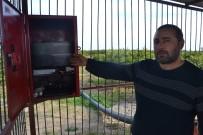 KAMERA SİSTEMİ - Narenciye Hırsızlarına Karşı Bahçe Sahibinden Güvenlik Kameralı Önlem