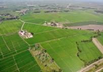 YOL YAPIMI - DSİ 4 İlde 14 Bin Hektar Alanda Arazi Toplulaştırdı