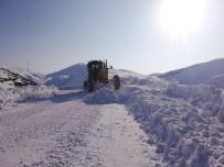 YOLCU MİNİBÜSÜ - Siirt'te Kar Esareti Devam Ediyor