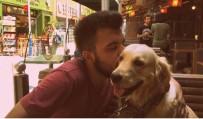 MAHKEME KARARI - Eski Sevgililerin 'Paylaşılamayan Köpek' Davasında Emsal Karar Verildi