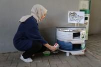 Üniversite Öğrencileri Hurda Lastiklerden Kedilere Yuva Yaptı