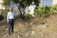 ARKEOLOJİK KAZI - İş Adamı Şifan, Aratos'un Mezarının Bulunduğu Alanı Mezitli Belediyesine Bağışladı