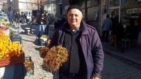 AĞRI KESİCİ - Kantaron Otu Pazar Tezgahlarında Da Satılıyor
