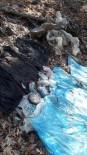 POLİS ÖZEL HAREKAT - Osmaniye'de 5 Kilo TNT Bulundu