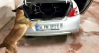 UYUŞTURUCU TİCARETİ - Otomobilden 16 Kilo Uyuşturucu Çıktı