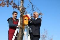 Muş'ta Osmanlı Mimarisi İle Kuş Evleri