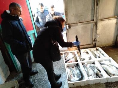 Balık depolarına şok baskın!