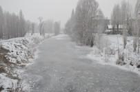 Muş'ta Karasu Nehri Dondu