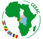 DEMOKRATIK KONGO CUMHURIYETI - Orta Afrika Ülkeleri Ulaşım Altyapısı Kurmak İçin Bir Araya Geliyor