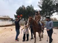 ZİHİNSEL ENGELLİLER - Şanlıurfa'da Atlı Terapi Antrenörlük Eğitimi