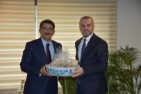 Genel Başkan Yardımcısı Kandemir'den Başkan Çelik'e Övgü