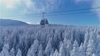 Uludağ'da Sislerin Arasında Büyüleyici Kar Yolculuğu