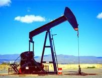 ENERJİ VE TABİİ KAYNAKLAR BAKANLIĞI - O illerde petrol aranacak
