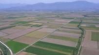 YOL YAPIMI - Aydın, Denizli Ve Muğla'da 269 Bin 647 Dekar Tarım Arazisi Toplulaştırıldı