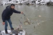 HABUR - Eksi 18 Derecede Balık Tutuyorlar