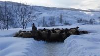 SUBAŞı - Muş'taki Dağ Köyleri Kar Altında Kaldı