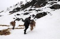 ABANT - Yaban Hayvanları İçin Doğaya Yem Bırakılıyor
