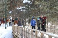 Abant Tabiat Parkı'nda Yarıyıl Tatili Yoğunluğu