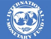 HINDISTAN - IMF'den dikkat çeken Türkiye yorumu