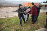 İzmit'te Kontrolden Çıkan Otomobil Şarampole Devrildi Açıklaması 1 Yaralı