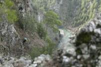 Kayalıklarda 2 Gün Mahsur Kalan 6 Keçi 8 Saatlik Operasyonla Kurtarıldı