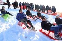 KARADENIZ - Ordu, Kar Festivalinde Buluştu