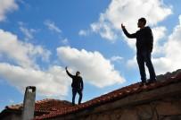 ÇEKIM - (Özel) Şebeke Avcısı Vatandaşlar, Cambazları Aratmıyor