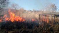 Antalya'da Sazlık Yangınında Bazı Evler Tahliye Edildi