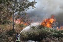 Antalya'da Sazlık Yangınında Bazı Evler Tedbir Amaçlı Tahliye Edildi