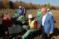 Büyükçekmece'de 'Tarım Yılı' Eğitim Programı Başlıyor