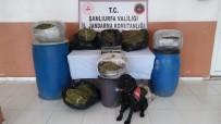 METAMFETAMİN - Şanlıurfa'nın Suruç İlçesinde 105 Kilo Esrar Ele Geçirildi