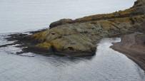 ÇEKIM - Şaşırtan 'Timsah Adası' Havadan Görüntülendi