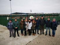 REHABILITASYON - Ergene Belediyesi Hayvan Barınağına Ziyaretler Sürüyor