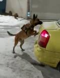 METAMFETAMİN - Kars'ta 3 Kilo Uyuşturucu Dedektör Köpek Odin'e Takıldı