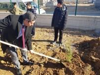 Malatya'da 100 Fidan Toprak Dede'yle Aynı Gün Toprakla Buluşturuldu