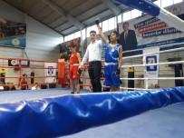 ŞAMPIYON - Mamak'ın Altın Yumrukları Ankara Şampiyonu