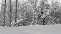KATO DAĞı - Tek Katlı Evler Kar Altında Kaldı