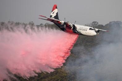 Avustralya'da Yangınlara Müdahale Eden Kanada Tanker Uçağı Düştü Açıklaması 3 Ölü