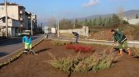 Büyükşehir Belediyesi Körfez'i Yeşillendiriyor