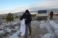 Gülşehir Belediye Ekipleri Yaban Hayvanları Unutmadı