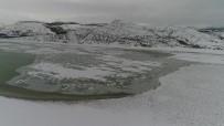 BÜYÜKBAŞ HAYVANLAR - Konya'da Buz Tutan Barajda Kartpostallık Görüntüler Ortaya Çıktı