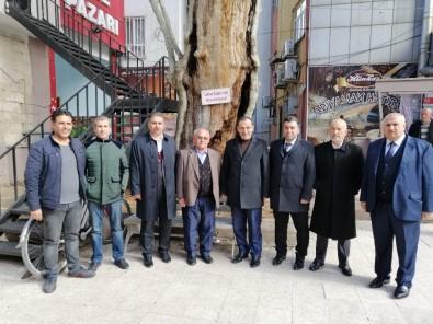 Milletvekili Fırat 400 Yıllık Anıt Ağacı İnceledi